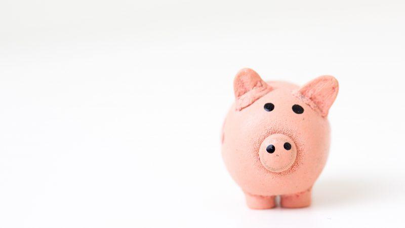 Informacja dla przedsiębiorców: do 8 stycznia macie czas na zgłoszenie do Małego ZUSu.