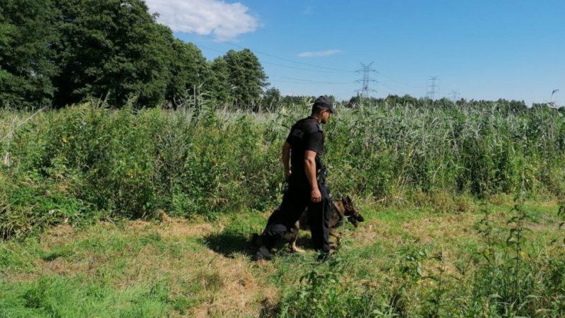 Tragiczny finał poszukiwań zaginionego z Lysek