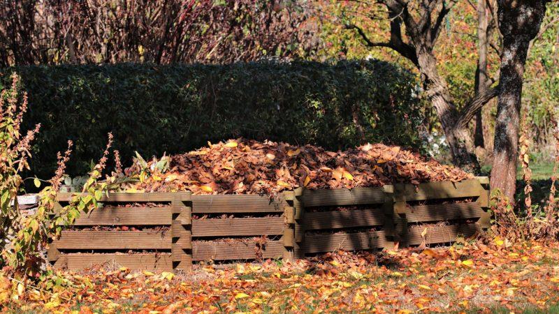 Mszana – ulga dla osób kompostujących bioodpady