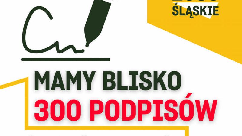 Petycja Polski 2050 w sprawie chodnika